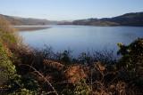 Mawddach Estuary 1.JPG