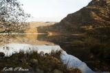 Llyn Cwm Bychan 7.jpg