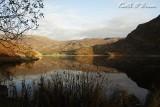Llyn Cwm Bychan 10.jpg