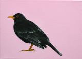 Black Bird - Merel