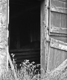 Doorway, abandoned Harris ranch, Stella, Nebraska.jpg