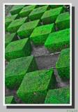 The green echiquier