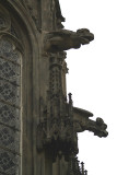 Building Detail - Windows and Gargoyles