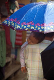 Baby Sleeping Under Umbrella