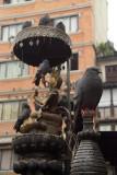Pigeons at Janabaha