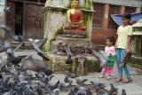 Feeding the Pigeons at Kathesimbhu 02