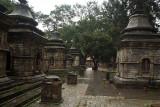Shivalaya at Pashupatinath 04