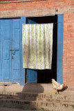 Chicken in a Doorway Bhaktapur 02