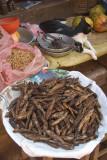 Dried Fish and Cat Bhaktapur