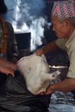 Butchered Goat Dakshinkali 02