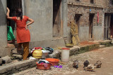 Woman and Ducks in Street Bhaktapur