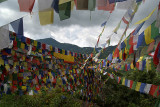 Prayer Flags above Monastery Pharping 03