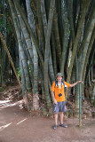 Chris Dwarfed by Giant Bamboo