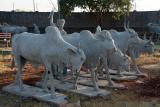 Concrete Cows Bahid Shahi Tombs Bidar