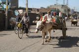 Ox Pulled Cart Bijapur