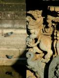 Carvings and Pigeons
