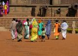 Colourful Visitors