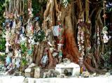 Rubbish Tree