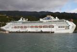 Cruising NZ 2011