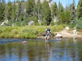 Crossing Pole Creek