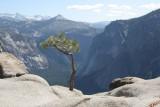 Top of Yosemite Falls & Yosemite Point