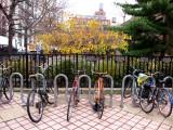 Bicycle Parking - NYU Athletic Center