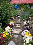 Petunia Path