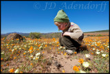 Namaqualand and West Coast - an odyssey