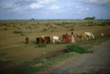 Driving South of Mogadishu