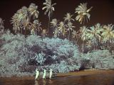 IR Palms and Girls