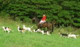 Hunting at Valley Green September 20, 2008