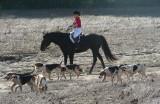 Hunting at Valley Green September 27, 2008