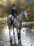 Blessing of the Hounds at Valley Green October 18