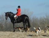 Hunting at Hill n Hound November 27th