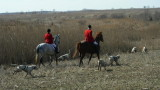 Hunting with Shawnee Friday February 29th