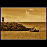 ... returning to land...