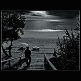... Lonely ....