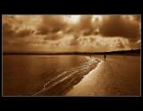 ... my beach walks ...