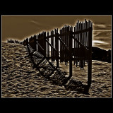 ... Another fence ...