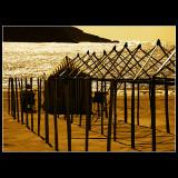 ... Shinning sea ...