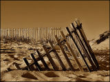 ... Fence ...