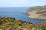 Gwynedd: welsh dragon