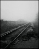 Tracks in the Fog 8X10
