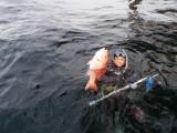 Diving trip off the Louisiana coast.