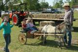 pony wagon.jpg