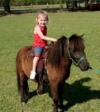tris pony.jpg