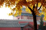 Forbidden Palace