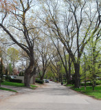 Queen Mary's Drive