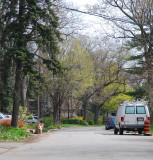 Strath Avenue