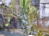 Moss growing on the face of the rocks because of the water leaking through it